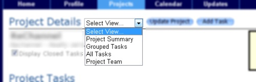 Project Views